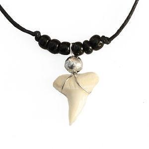 Valentine's Day: love and a shark's tooth